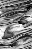 圖片:雲淡風輕VS.人生─中華民國FAI攝影創藝學會會員聯展