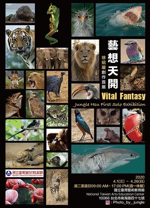 Vital Fantasy - Jungle Hsu First Solo Exhibition