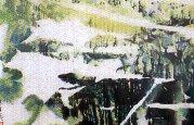 圖片:2001現代水墨畫會聯展