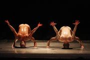 圖片:光環舞集2008《朝聖者之夢》新作首演