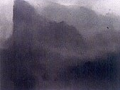 圖片:自然中的靈光-戴佳茹個展